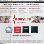 Assylum Premium Passwords