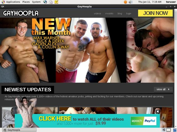 Gay Hoopla Paysite Discounts